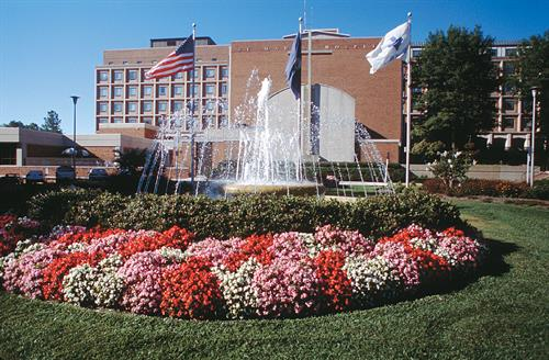 Bon Secours, St. Mary's Hospital