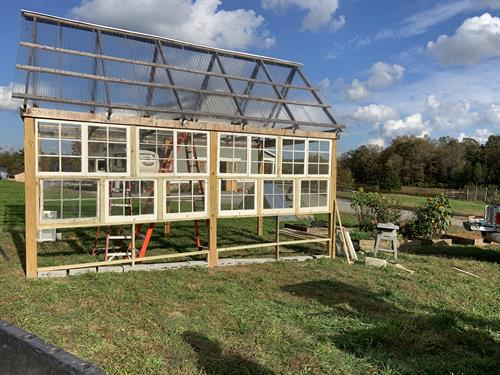 Work in progress...green house made from old windows.