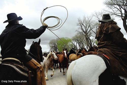 Sombrero Ranch Horse Drive