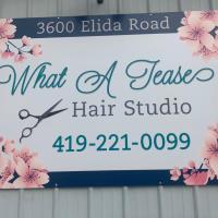 What a Tease Hair Studio - Lima