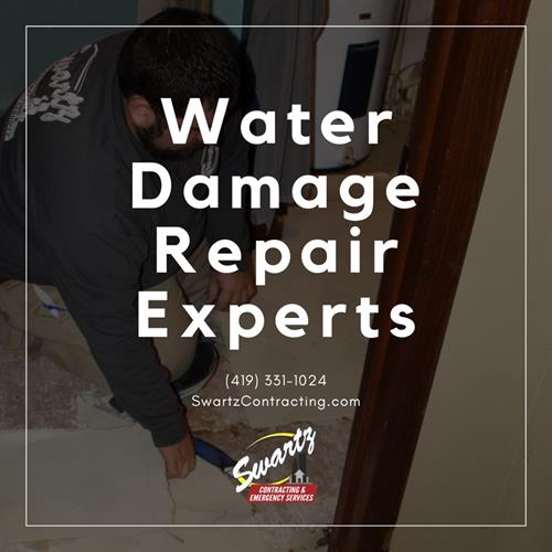 Water Damage Cleanup Experts