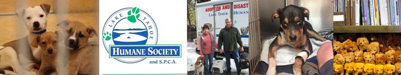 Lake Tahoe Humane Society