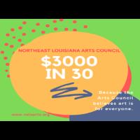NELA Arts Council - $3000 in 30