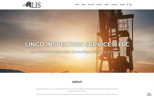 Gallery Image Lingo_Inspection_Website.jpg