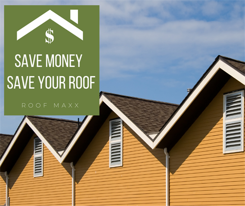 Save money while saving your roof from early replacement.