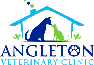 Angleton Veterinary Clinic