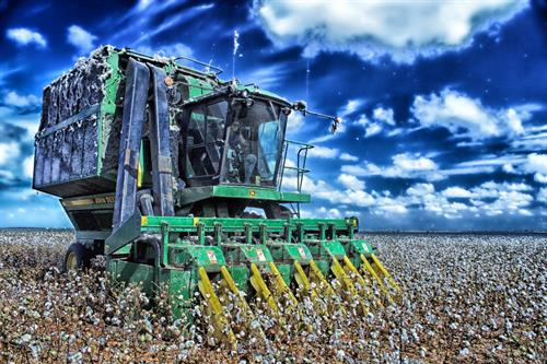 Gallery Image cotton-harvester-1024px.jpg