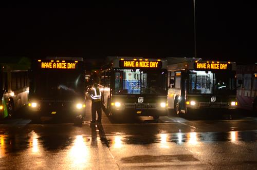 Fleet of MATA Buses