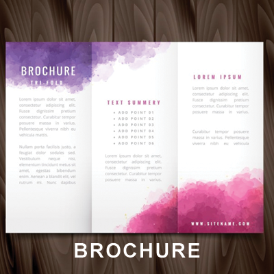 100 Brochures starting at $80