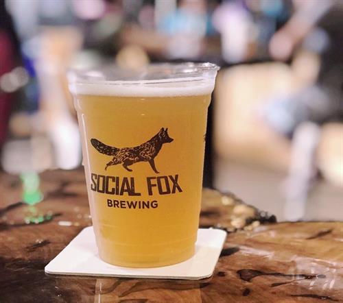 Social Fox Brewing - Norcross