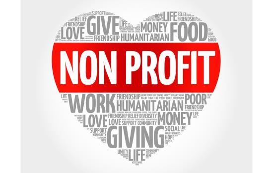 Non-Profit/Service Organization