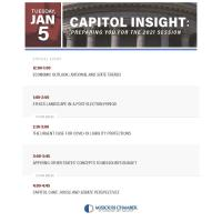 Capitol Insite: Preparing you for the 2021 Session