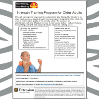Strength Training Program for Older Adults