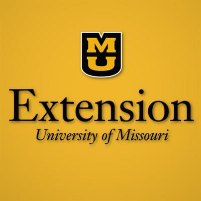 Mu Extension to Provide Zoom Child Care Provider Training
