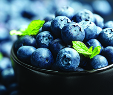 Gallery Image Blueberries.jpg