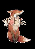 Copper Fox Contrived