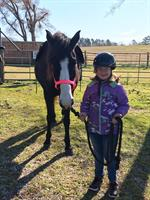 Campfire Cookout and Open House at Starbrite Therapeutic Equestrian Center
