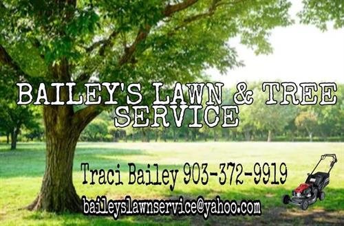 baileys lawn and tree service serving east texas area