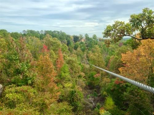 940 ft. long - 100 ft. above the ground