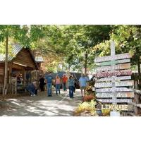 Festivals and Fall Fun await at Lake Chatuge