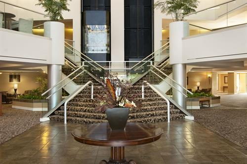 Our 7 Story Atrium Lobby
