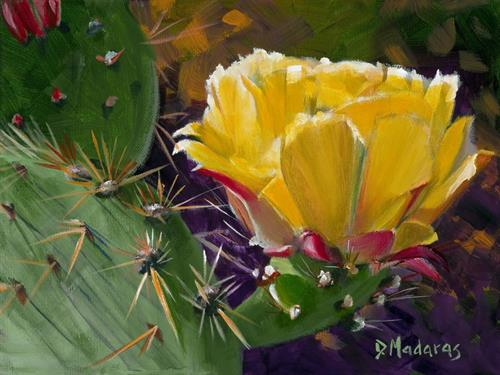Gallery Image 10_PRICKLY_PEAR_BLOOM_preview.jpeg