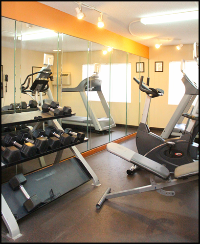 Gallery Image GYM_(2).png