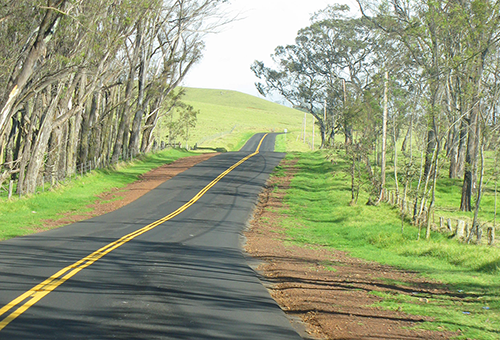 Along the Saddle Road, Big Island, Hawaii