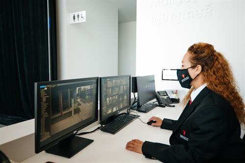 Corporate Security Concierge Surveillance