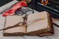 How to Host a Hogwarts Halloween - learn by attending our parent/child party!