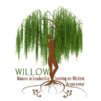 West Volusia Chamber WILLOW Networking Event