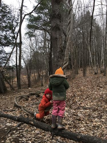 Outdoor play is an important part of our day.  We are on 5 acres of land.