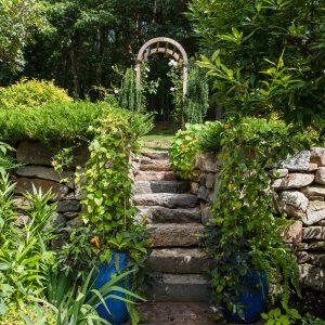 Gallery Image Pinetree-Institute-6860-300x300.jpg