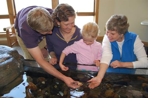 Our indoor tide pool is a favorate of all ages!