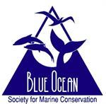 Blue Ocean Society - Marine Conservation