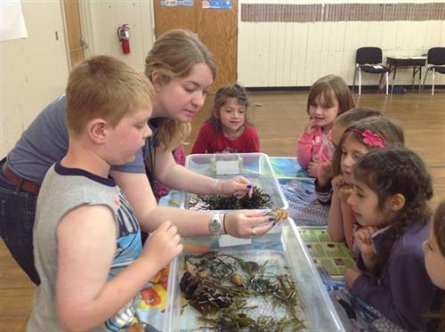 Blue Ocean Society staff member teaching young students about marine life.