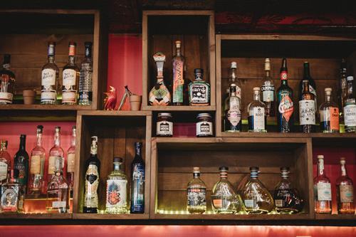 Bar at Vida Cantina