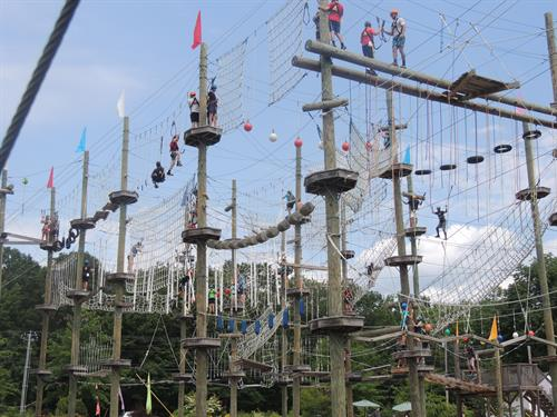 Take Flight's Aerial Adventure Course