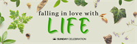 Sunday Celebration: Falling in Love with Life