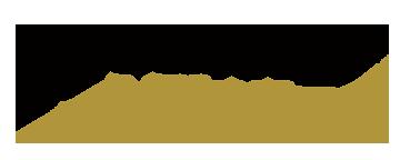 Security Alliance Logo