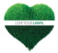 Lawn Doctor - Magnolia