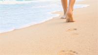 La Mer Beachfront Resort - Cape May