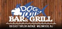 Dogtooth Bar & Grill