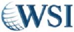 WSI Digital Marketing Services