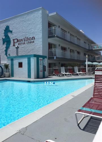 We also have 8/ 2 bedroom apartments for weeekly rentals located by our pool