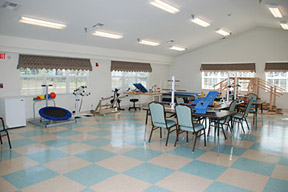 Gallery Image Hickory_Ridge_Therapy_Gym.jpg