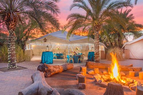 From a casual picnic or company BBQ to an over-the-top reunion or an elegant wedding, the Phoenix Zoo's nearly 20 venues offer unique and beautiful backdrops for any event.