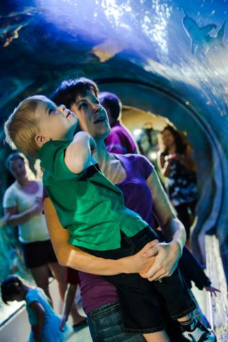 SEA LIFE Arizona is great for guests of all ages.