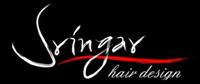 Sringar Hair Design - Arlington