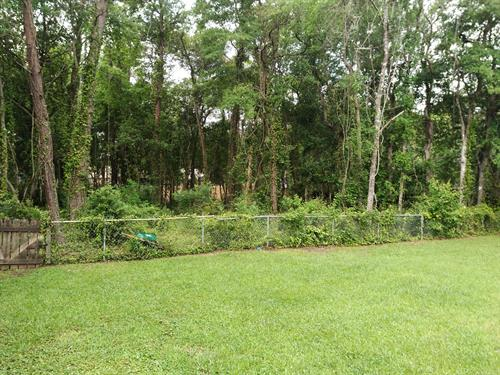 Gallery Image niceville_backyard_before.jpg